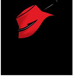HLM Color Logo